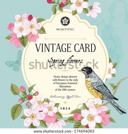vintage vector card spring