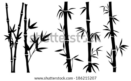 bamboo silhouettes on the white