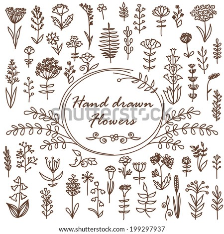 hand drawn vector flowers can