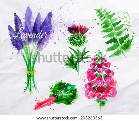 flower grass set drawn