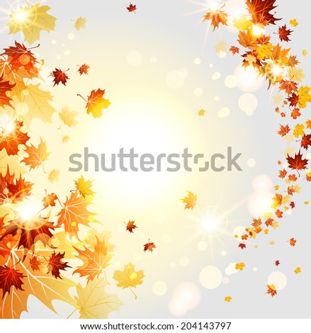 swirl of beautiful leaves