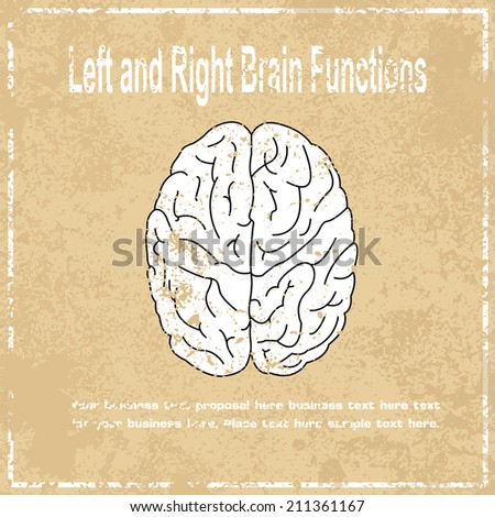 left and right brain function