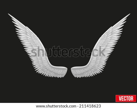 white open angel wings vector