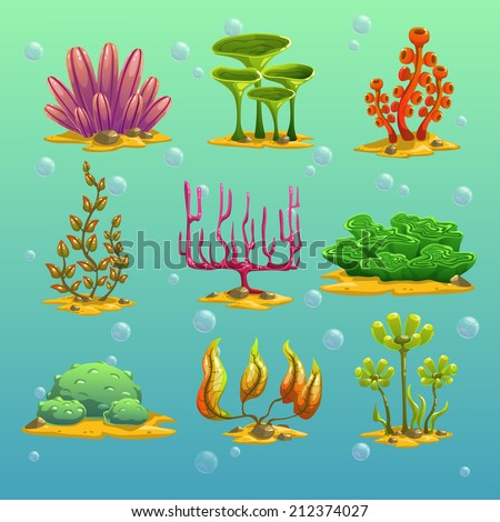 cartoon algae  underwater