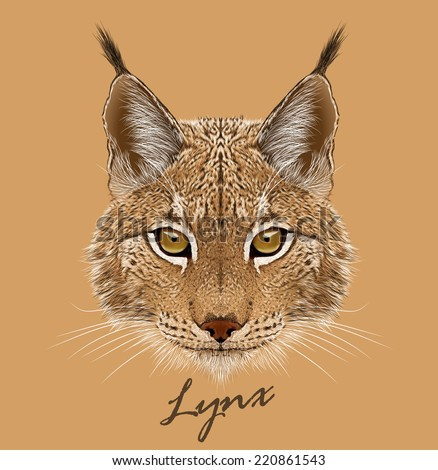 vector portrait of lynx cat