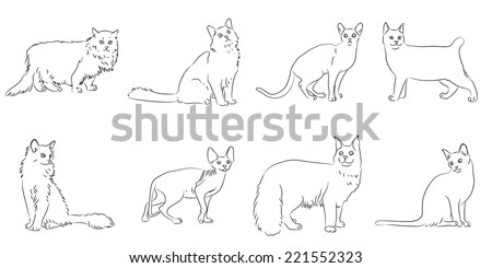 set sketches of cats vector