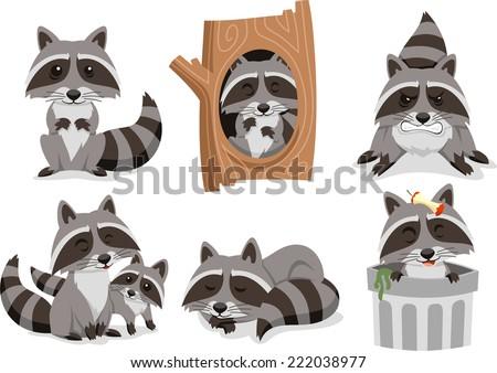 raccoon raccoons set  with