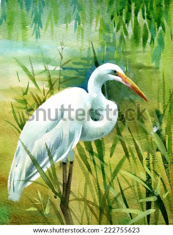 watercolor heron in water