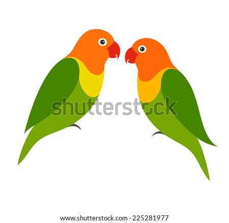 parrot lovebird