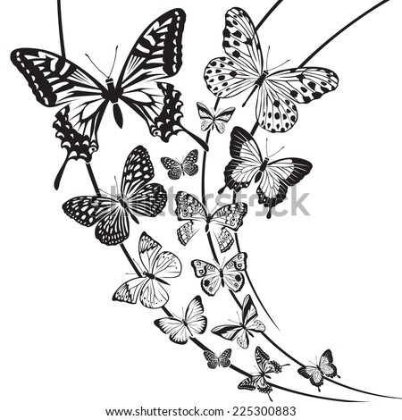 monochrome butterflies design