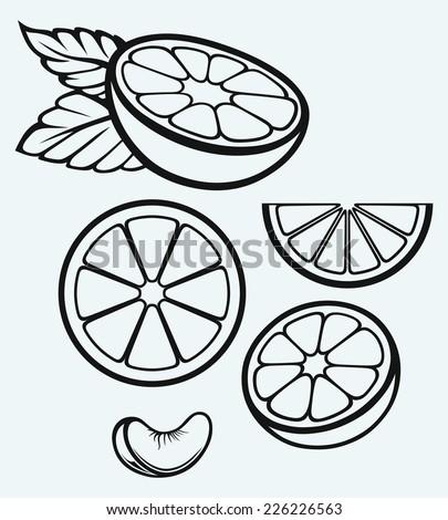 Orange Slice clip art Free Vector / 4Vector