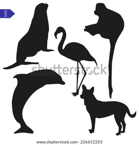 vector silhouettes of seal  dog