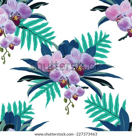 beautiful tropical flowers and