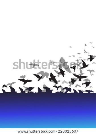 background frame white flying