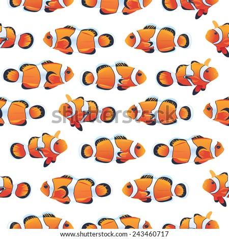 anemonefish  clownfish  shoal