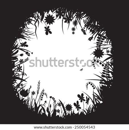 shadows flowers  flower frame