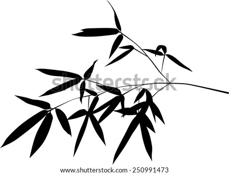 illustration with black bamboo