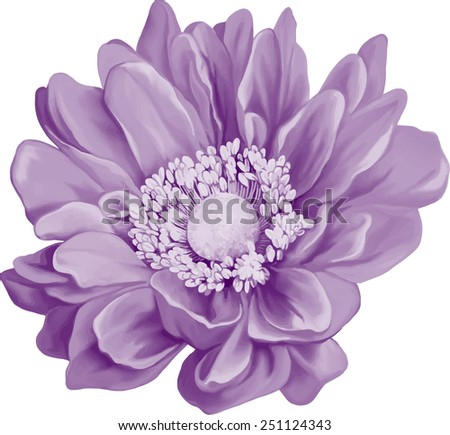 mona lisa flower  purple light