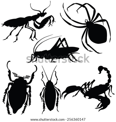 vector silhouette of various