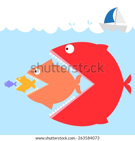 colorful of fishes in the sea