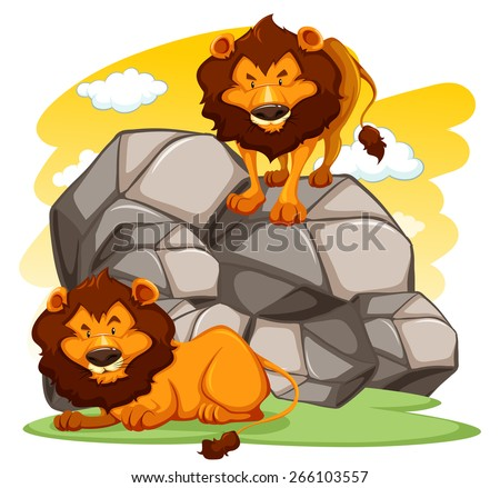 a lion standing on rocks