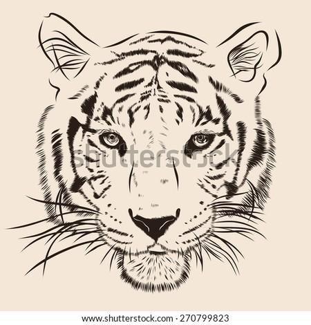 original artwork tiger with