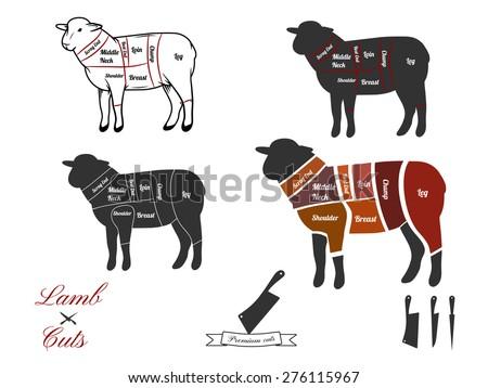 vector illustration lamb cuts