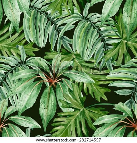 tropical leaves  dense jungle
