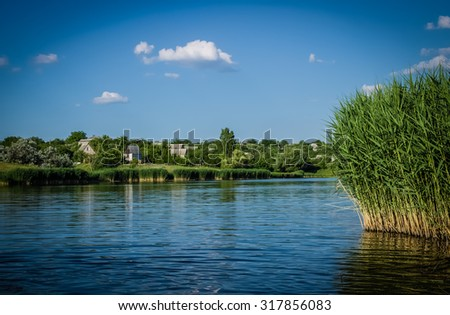 a beautiful little pond with lush reeds against a bright blue sky - stock photo