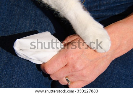 A cat's paw is gently touching the hand of an upset woman who has a tissue in her hand, which shows how important pets can be to people - stock photo