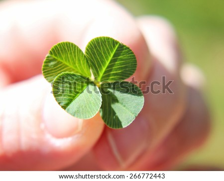 a hand holding a four leaf clover (very shallow depth of field) good for luck or st patrick's day  - stock photo