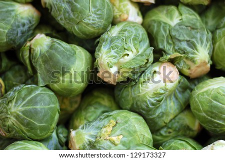 a lot of brussels sprouts  for background uses - stock photo