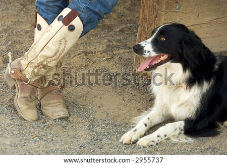 A pair of worn cowboy boots and the owners dog - stock photo