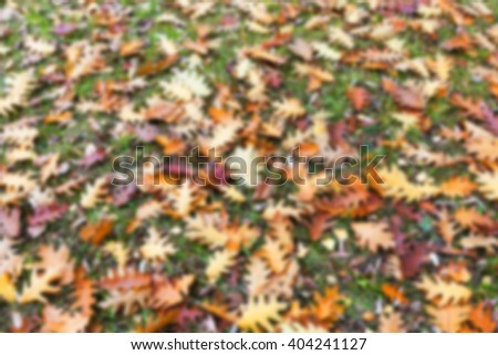 a park in the autumn, during cloudy weather, late autumn, defocused - stock photo