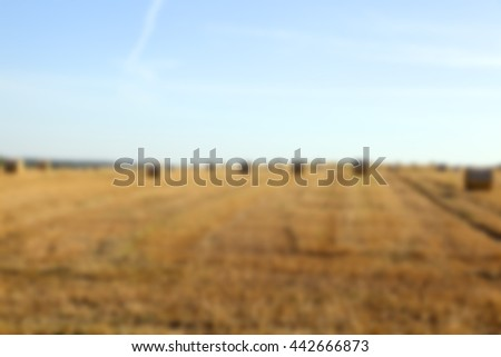a stack of wheat straw, which is in the field after harvest, Defocus - stock photo