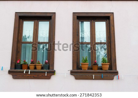 A Turkish house classic, flowers in plastic or tin pots. - stock photo