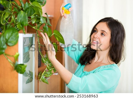 adult female watering domestic plant leaves indoor - stock photo