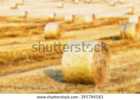 Agricultural field on which the harvesting of cereals, wheat, defocused - stock photo