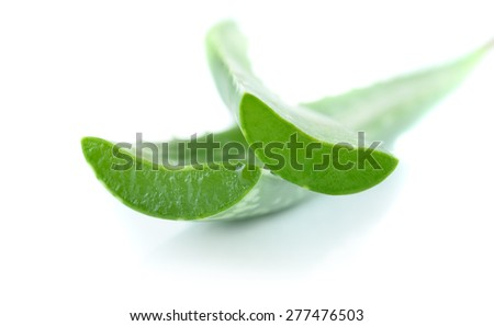 aloe leaves isolated on white background - stock photo