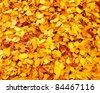 autumn leaves - stock photo