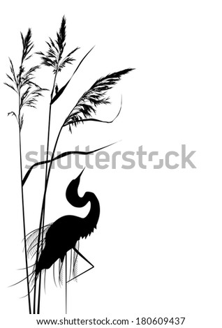 background with reed and heron in black and white colors - stock photo
