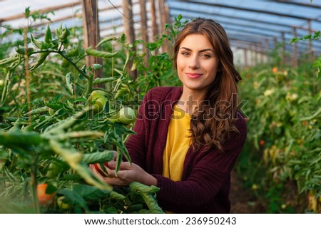 Beautiful young woman in uniform gardening and smiling at camera. Greenhouse produce. Food production. Tomato growing in greenhouse - stock photo