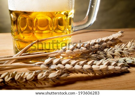beer glass and wheat - stock photo