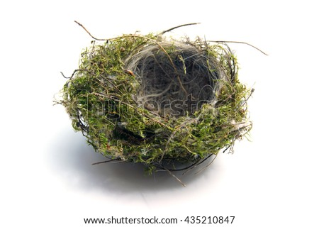 Bird's Nest - isolated on white - stock photo