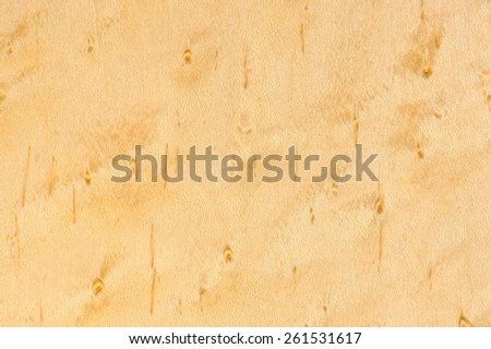 Birdseye Maple Wood Texture - stock photo