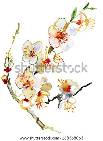 Blossoming tree brunch, watercolor illustration - stock photo
