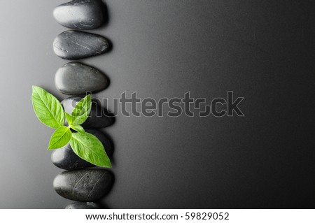 border made from black stones and leaves - stock photo