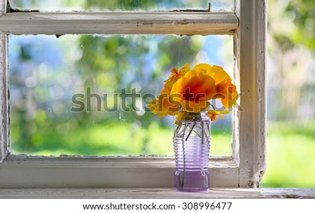 Bouquet of orange flowers on window. Rustic still life. Coziness in the house. - stock photo