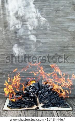 Burning book - stock photo