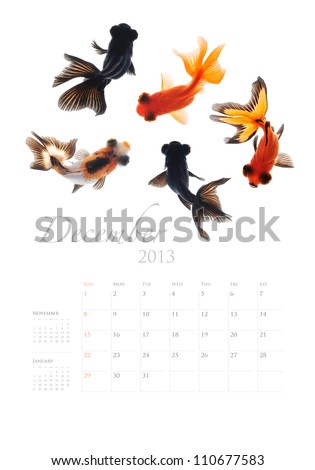2013 Calendar A4 vertical size, Goldfish lover concept - stock photo